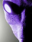 Avatar di MaxpoweR