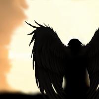 Avatar di Dragonfly82